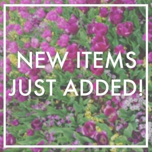 ✨ Tons of new items just added!